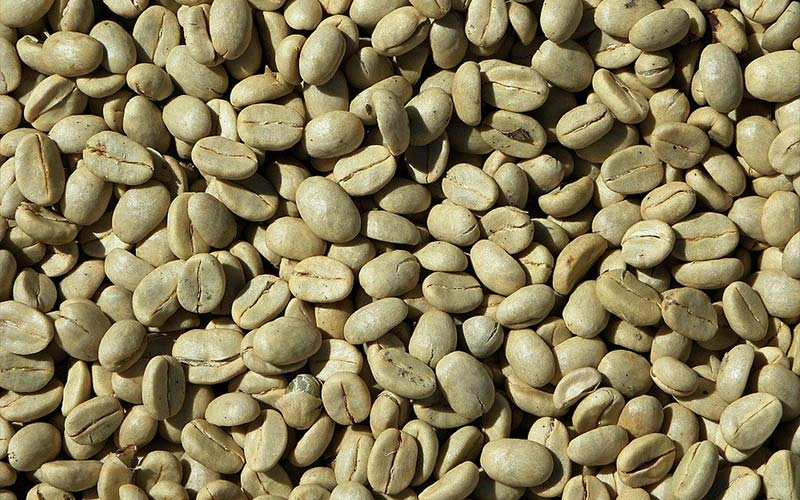 Is Green Coffee Effective For Weight Loss?